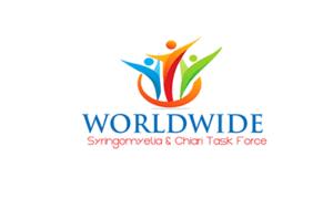 2015 WSCTF logo