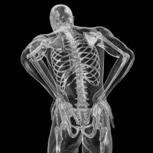 Síndrome Facetario - Institut Chiari de Barcelona